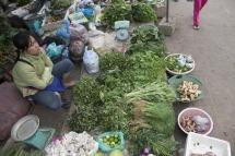 Phosey Market Luang Prabang