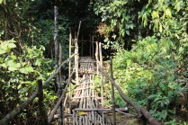 Bridge during our trek