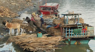 This boat is bringing kindling for the kilns in the village where they make pottery.
