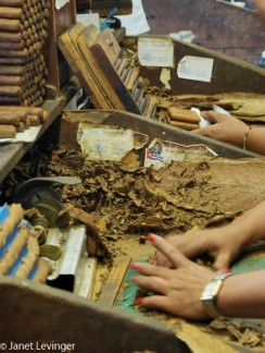 Trinidad cigar factory